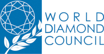 World Diamond Council Logo